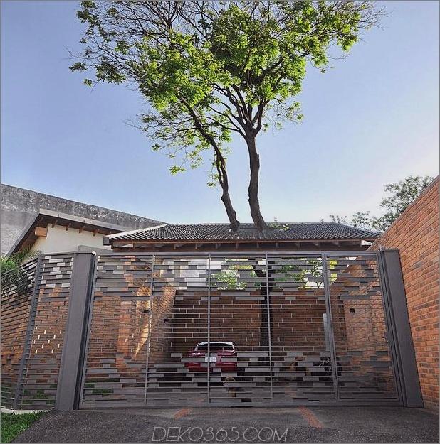 Baum durchbohrt das Dach und andere verwegene Details im Ziegelhaus_5c598f3847070.jpg
