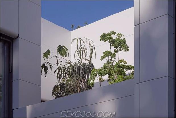 comtemporary-urban-house-with-timber-innerstruktur-13-deck-plants.jpg