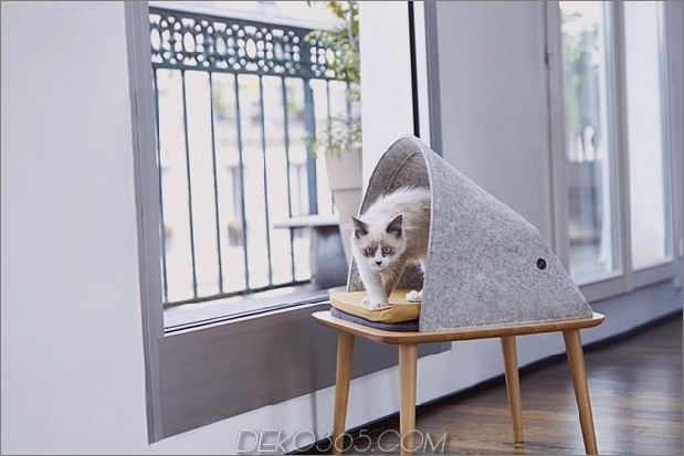 6-chic-cosy-cat-beds-modern-homes.jpg