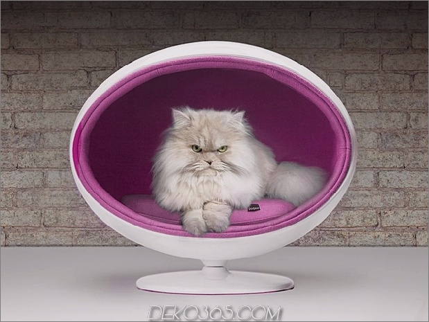 19a-chic-cosy-cat-beds-modern-homes.jpg