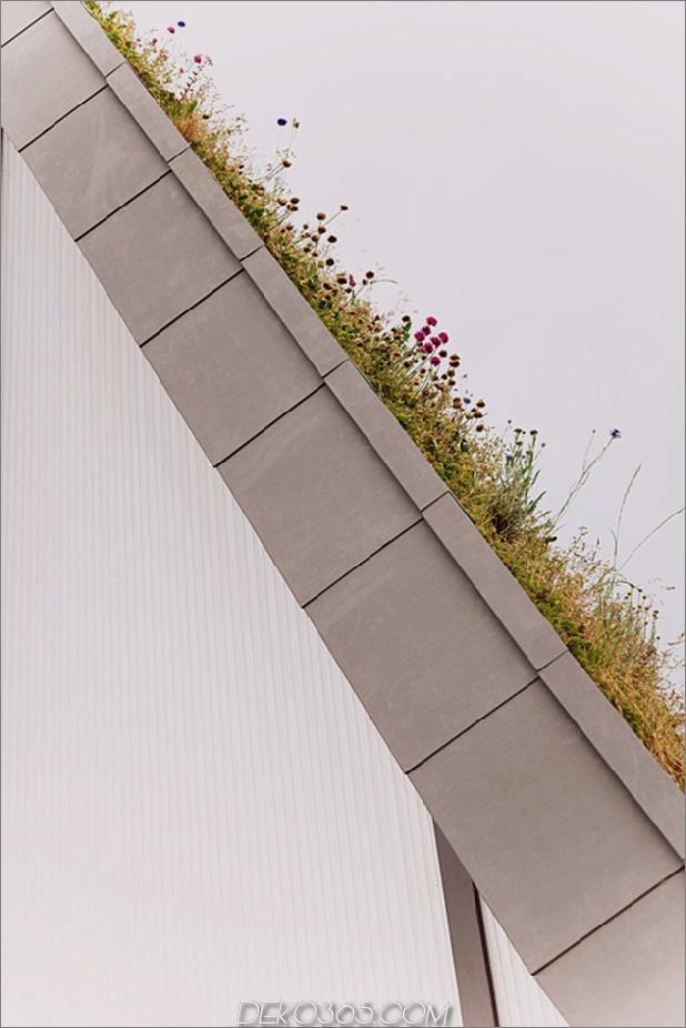 Untergrund-Wellenhaus-mit-Wildblume-und-Kräuteraußen-7.jpg