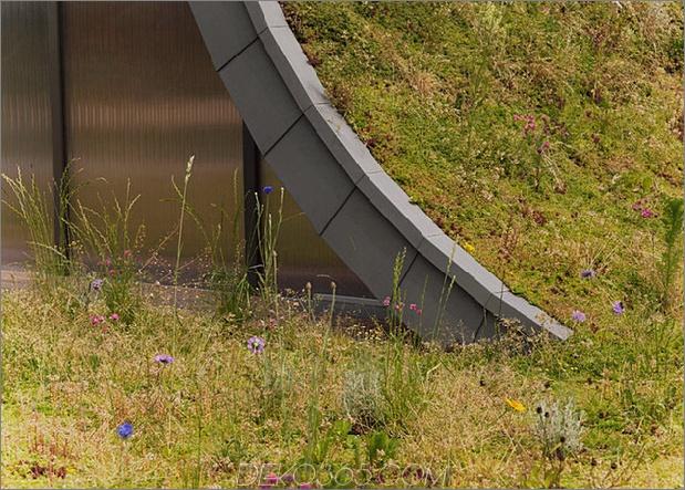 Untergrund-Wellenhaus-mit-Wildblume-und-Kräuteraußen-11.jpg