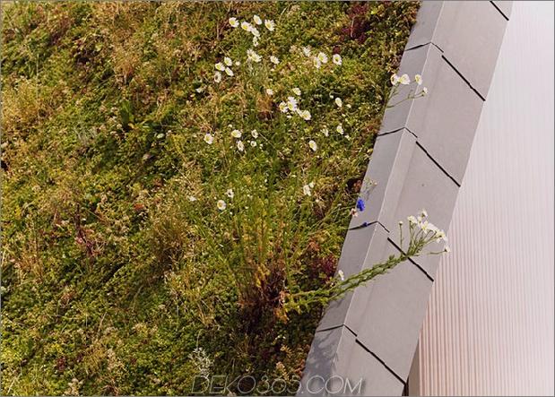 Untergrund-Wellenhaus-mit-Wildblume-und-Kräuteraußen-12.jpg